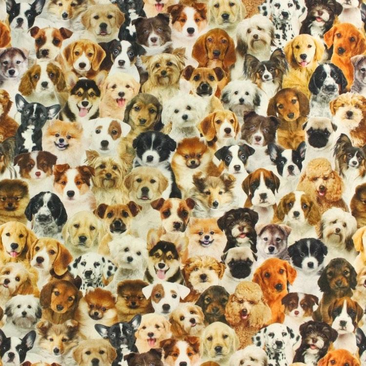 Design Voor Honden : Half panama schattige honden digitalprint stoffen hemmers