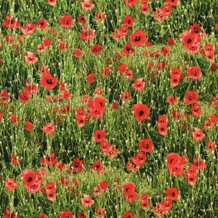 Half panama poppy flowers digital print fabrics hemmers add to wish list half panama poppy flowers digital print mightylinksfo