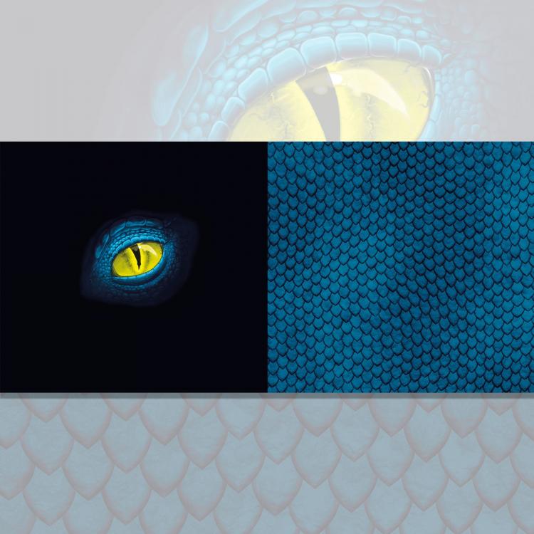 ANGEBOT Baumwolljersey 2 x 25 x 150 Blümchen uni blau